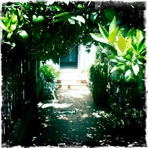 ingresso2